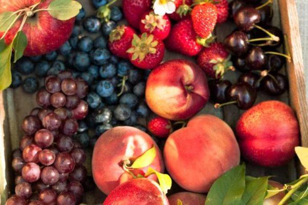 Jak pěstovat ovoce bez chemie