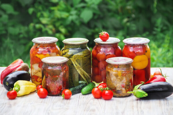 Jak na domácí kvašenou zeleninu, studnici zdraví