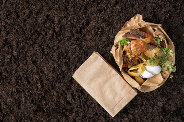 Jak kompostovat aneb ekologie na první místě